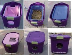 What a super idea for outside cats and barn cats.... And these containers are on sale everywhere right now!