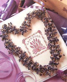 Lavender Card. So cute and crafty!