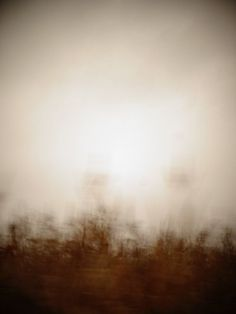 Sprites, #73. Landscape Photography, Mythical Art, Fairies, Blurred Images, Abstract Photography, Minimal, Sepia Tone, Natural Decor,Glowing...