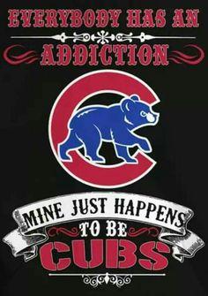 Chicgo Cubs, Cubs Team, Cubs Win, Bear Cubs, Go Cubs Go, Chicago Bears, Cubbies, Drink Beer, Baseball
