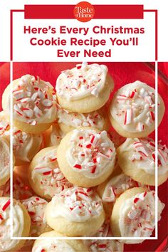 Here's Every Christmas Cookie Recipe You'll Ever Need Best Holiday Cookies, Best Christmas Cookie Recipe, Xmas Cookies, Holiday Desserts, Holiday Baking, Christmas Recipes, Christmas Candy, Baking Recipes, Cookie Recipes