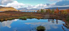 RuskaSaanaKilpisjärvi
