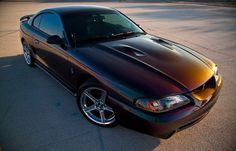 '96 Mystic Cobra
