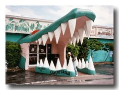 """Gatorland, Orlando, FL  When I was 5, I appeared in an ad for them.  We were visiting, and they asked my parents if I could be in the ad standing in the """"mouth""""."""