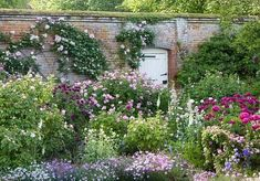 The Rose Garden at Mottisfont Abbey (National Trust). Source: The Telegraph Photography: Andrew Butler (roses garden photography)