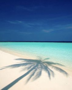 Definition of tropical paradise - Awesome