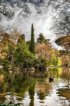 Lake – Lago del Jardin del Capricho, Madrid (Spain).