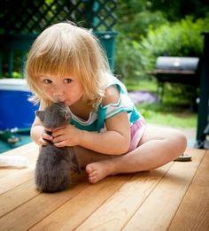 kitten kissing.