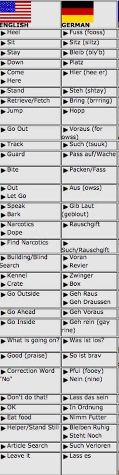 English to German dog commands.