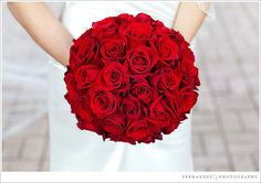 ideas for bridal bouquet red roses brides babies breath Bouquet Bride, Rose Bridal Bouquet, Red Rose Bouquet, Red Bouquet Wedding, Red Wedding Flowers, Wedding White, Trendy Wedding, Bridesmaid Flowers, Fall Wedding