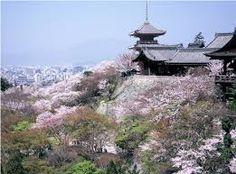 ผลการค้นหารูปภาพสำหรับ kiyomizu dera sakura