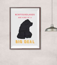 Newfoundland dog  newfoundlands are kind of a door joinanotherview