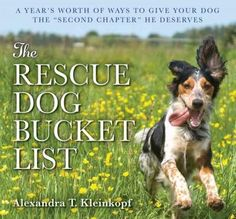 Over 365 creative ways to give your rescue dog the second chapter he deserves! Really Important Stuff My Dog Has Taught Me meets 1,001 Places to See Before You Die in this creative and heartwarming bu