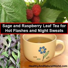 How to Make Sage and Raspberry Leaf Tea for Hot Flashes and Night Sweats ~ this is an easy recipe with sage leaves that reduce sweating and have astringent properties. Raspberry leaves are traditionally used to balance female hormones.