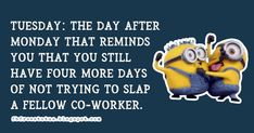 funny tuesday memes for work Happy Tuesday Meme, Happy Tuesday Morning, Tuesday Motivation Quotes, Morning Quotes, Daily Quotes, Motivational Quotes, Funny Memes, Sayings, Daily Qoutes