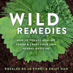 🌿Our new book is available for pre-order!!!🌿  We have lots of cool bonuses for folks who pre-order Wild Remedies this week!  I am so excited for you to see this book! It's absolutely gorgeous, with beautiful watercolor illustrations and photography.