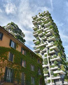 Human vs plants   Presto al cinema. Ah no a Milano!  _______________________________________________________ #milano #igersmilano #milanocity #milanocityufficiale #milano_in #milano_go #milanodavedere #green #nature #boscourbano #skyscraper #bio #sky #cloud #photooftheday #whatitalyis #yallersitalia #ig_italia #igersitalia #view #pov #picoftheday #tag #architecturelovers #arhitectureporn by mirko.tiburzi
