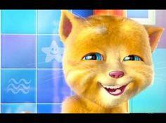 Gato falante boa noite - YouTube