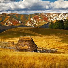 Autumn in Apuseni Mountains - Romania by Adrian Petrisor
