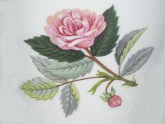 Hathaway Rose