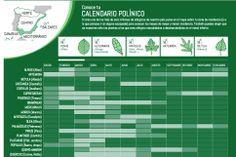 Calendario polínico   ELMUNDO.es.  http://www.farmaciafrancesa.com/main.asp?Familia=189&Subfamilia=586&cerca=familia&pag=1&p=223