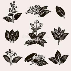 Tobacco Leaf Set Vector Illustration Spon Leaf Tobacco Set Illustration Vector Ad Tobacco Leaf Leaf Illustration Leaf Drawing