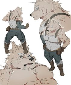 Yiff Furry, Anime Furry, Wolf Character, Character Creation, Character Design, Dark Souls Art, Cute Gay, Animal Illustrations, Furry Art