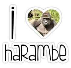 I Love Harambe