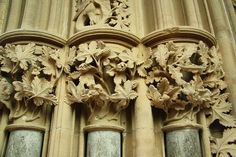 southwell minster chapter house  wonderful carved leaves