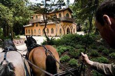 Chalet da Condessa em Sintra conquista prémio Europa Nostra. Foto: Rita Baleia