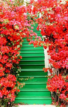 red green stairway stairs flowers arch