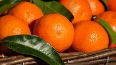 Filename: citrus, clementines, fruit, mandarins wallpaper Resolution: File size: 560 kB Uploaded: - Date: Fruits Images, Types Of Fruit, Fractionated Coconut Oil, Healthy Fruits, Let Them Eat Cake, Tea Time, Essential Oils, Brunch, Food