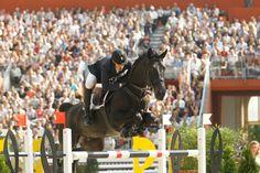 Grand Prix Horse jumping - Rik Hemeryck sur Quarco de Kerambars
