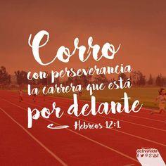 «Por lo tanto, ya que estamos rodeados por una enorme multitud de testigos de la vida de fe, quitémonos todo peso que nos impida correr, especialmente el pecado que tan fácilmente nos hace tropezar. Y corramos con perseverancia la carrera que Dios nos ha puesto por delante». —Hebreos 12:1