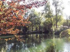 Parque D.carlos I , caldasdarainha