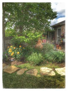 Garden Backyard Fort Worth Texas BH2304