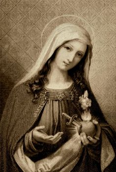"""""""O my Mother, before death overtakes me, obtain for me great sorrow for my sins, a true amendment, and constant fidelity to God for the remainder of my life.""""    rf"""