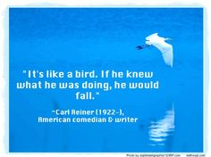 """I've had moments where God has shoved me from behind and said """"Get out there . you're not meant to stay here."""" Why is God forcing me to. Carl Reiner, Im Crazy, Getting Out, Comedians, Writer, Ads, In This Moment, Shit Happens, Sayings"""
