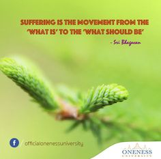 Suffering is the movement from the 'what is' to the 'what should be.' -Sri Bhagavan