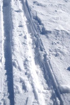 Cannot wait for this. Snow and cross country skiing tracks. Cross country skiers are always utterly warm and polite..