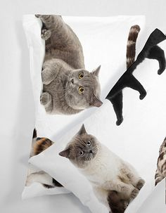 Lifesize cat collection pillowcases