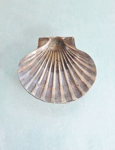 Vintage Brass Seashell Dish  oxidized scallop by CuriosityCabinetVintage Brass Seashell Dish - oxidized scallop shell footed bowl - beach decor