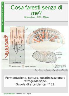Lezione n. 12. La trovi solo su Quotidie Magazine a questo link www.quotidiemagaz... previa registrazione gratuita, nella sezione ARGOMENTI - TECNOLOGIA