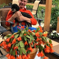 Orange and blue: Patrick, Margot and a luscious jungle cactus in Frank's garden (c) Debra Lee Baldwin