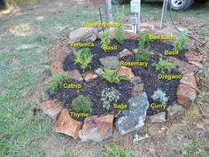 different type of spiral spiral herb garden