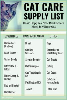 Care Supplies List Cat Care Supplies List - A list of some basic supplies and other items new cat owners need for their cat.Cat Care Supplies List - A list of some basic supplies and other items new cat owners need for their cat. Cute Kittens, Cat Care Tips, Pet Care, Pet Tips, Gato Crochet, Cat Shampoo, Gatos Cat, Cat Hacks, Kitten Care