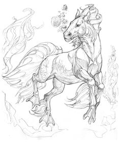 Draw Horses I seem to be drawing underwater horses again… - Creature Drawings, Horse Drawings, Animal Drawings, Art Drawings, Drawing Art, Fantasy Creatures, Mythical Creatures, Mythological Creatures, Animal Sketches