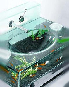 aquarium inside sink.