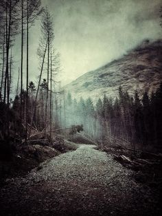 Glen Orchy & Glen Etive by Julian Calverley, via Behance Glen Etive, Cool Photos, Beautiful Pictures, Haunting Photos, Road Trip, Misty Forest, Destinations, Iphone Photography, Winter Travel