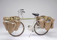bamgoo bicycle transportation service system by sara urasini